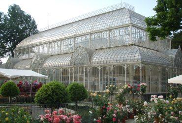 il giardino dell'orticultura a firenze