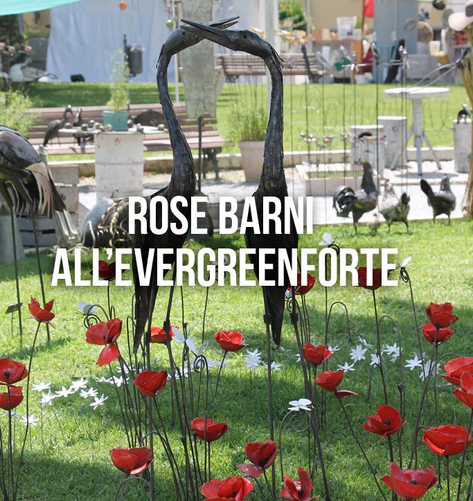 Come innovare anche un piccolo giardino con l 39 arte - Giardino con rose ...