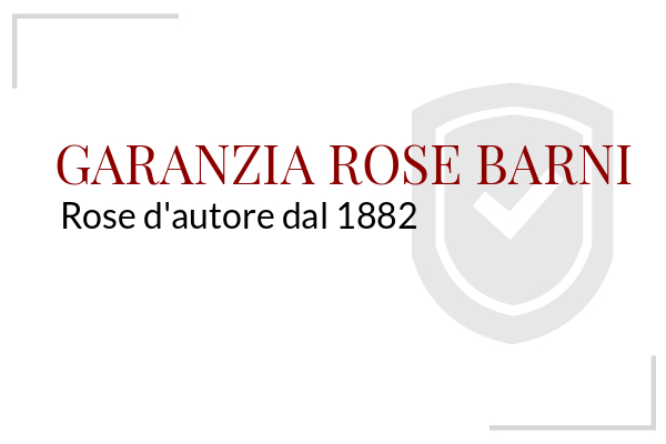 Garanzia Rose Barni
